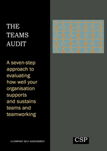 The Teams Audit
