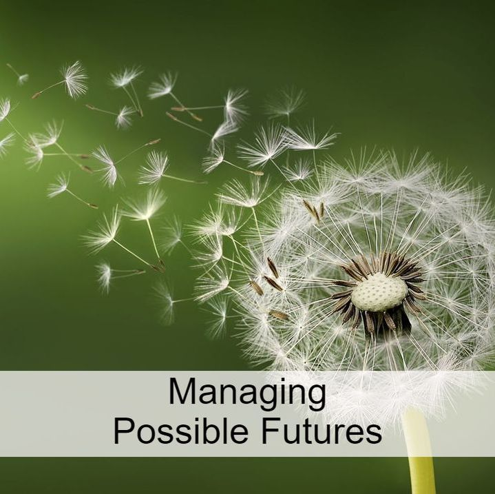 Managing Possible Futures: link to titles